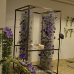 expomariage-2013-decoratiuni-si-aranjamente-florale-1